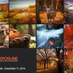 Finalists – December 11th – Autumn