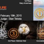 Winners!  February 19th, 2015 – Wildlife