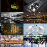 Finalists – March 30, 2015 – Reflections