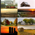 Finalists – March 9, 2015 – Rural
