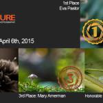 Winners!  April 6th, 2015 – Macro