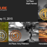 Winners!  May 11, 2015 – Trees