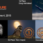 Winners!  June 4, 2015 – Birds