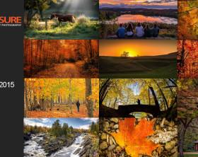 Autumn-Finalists