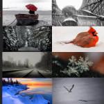 Finalists – December 7, 2015 – Snow