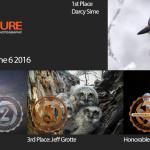 Winners! June 6, 2016 – Nature