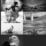 Finalists – February 20, 2017 – Black & White